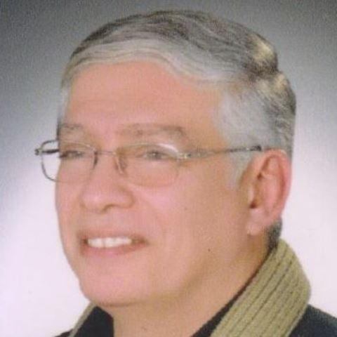 محمد المنايلي
