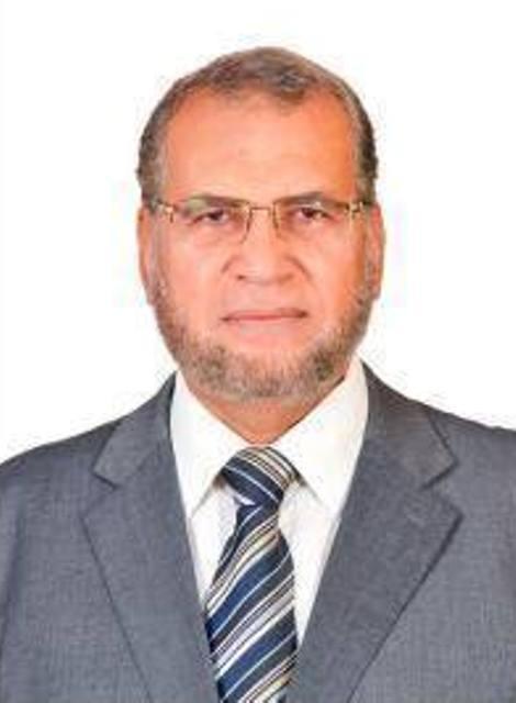 د. محمد النجار