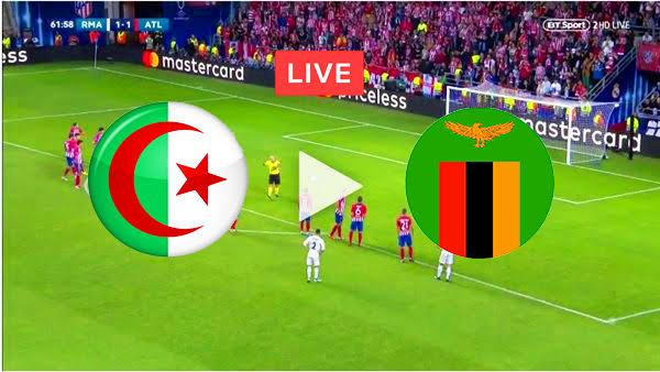 بث مباشر الجزائر وزامبيا