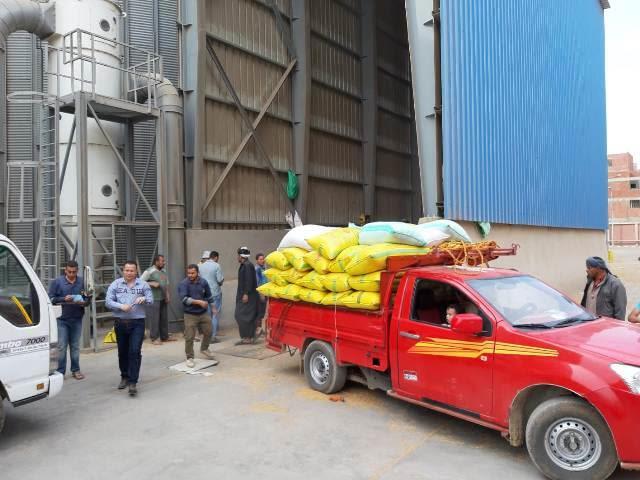 محافظ الشرقية وفايزة عبد الرحمن يتفقدان عمليات توريد القمح