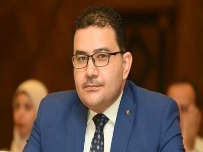 حاتم بكر عضو مجلس الأعمال المصري للتعاون الدولي