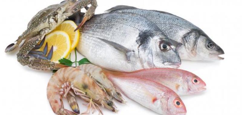 أسعار السمك اليوم السبت 17 إبريل 2021