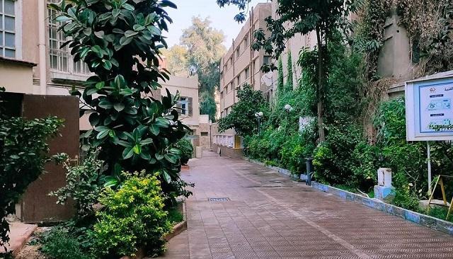 كل ما تريد معرفته عن اختبارات القدرات بكلية التربية الفنية فى جامعة حلوان.. بالصور