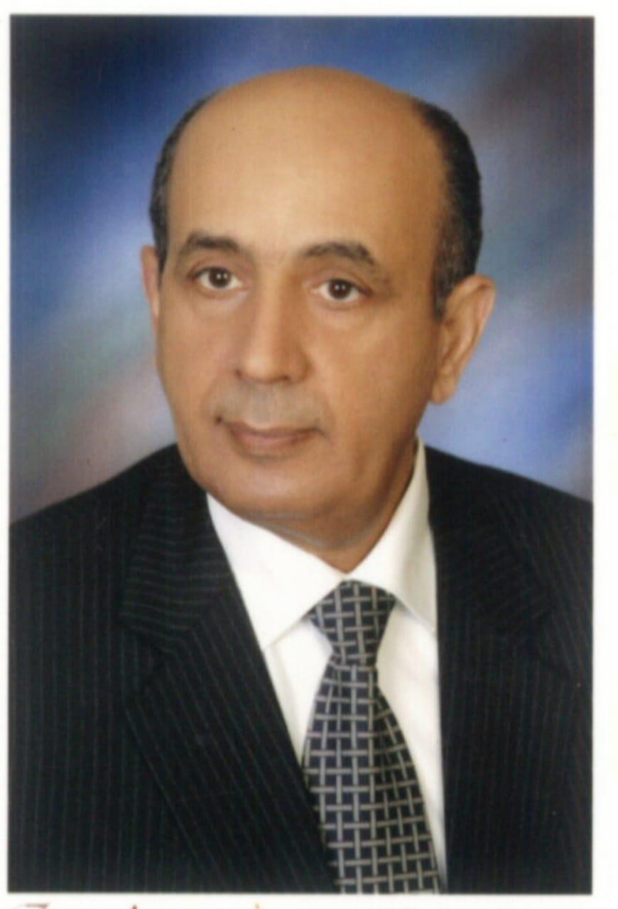 المستشار محمد محمود حسام الدين