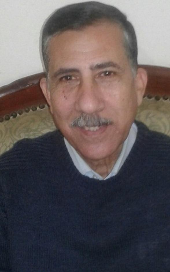 مجدى سعد خليل