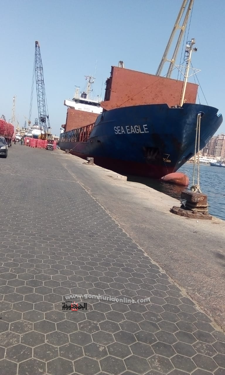 نشاط في حركة تداول البضائع بميناء الاسكندرية